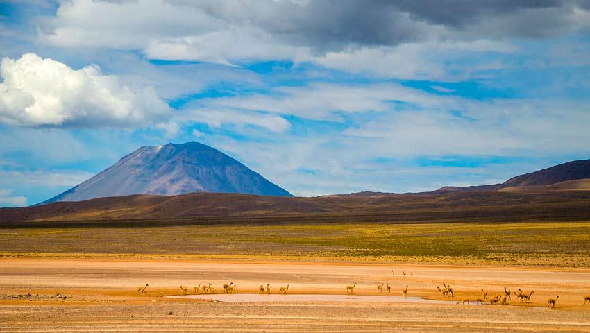 Tour Cañón del Colca 02D / 01N