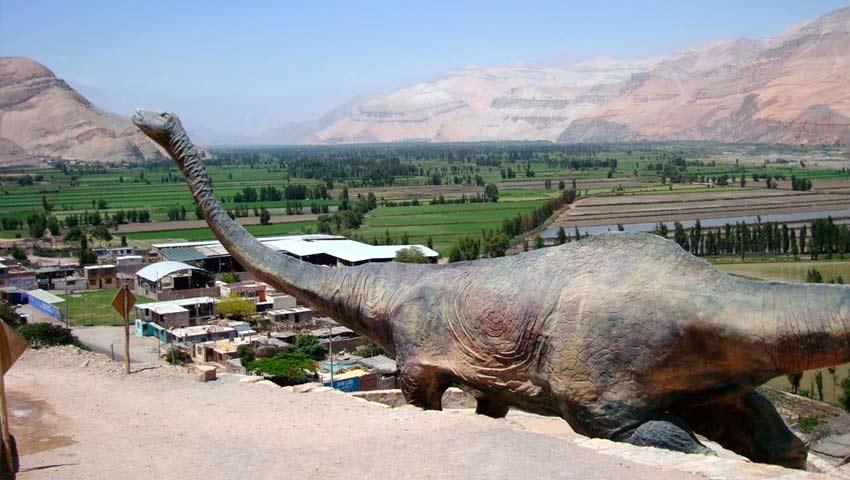 Tour a Toro Muerto - Valle de Majes
